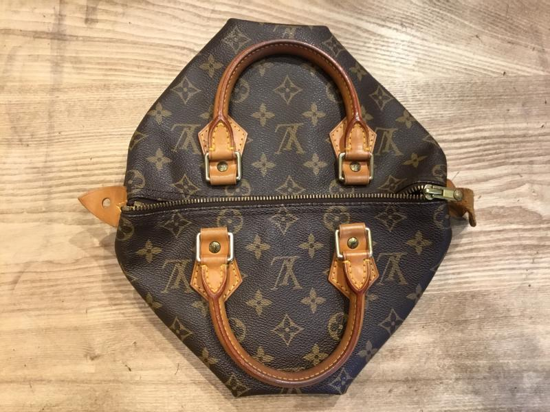 Louis Vuitton Speedy 25 $360.00